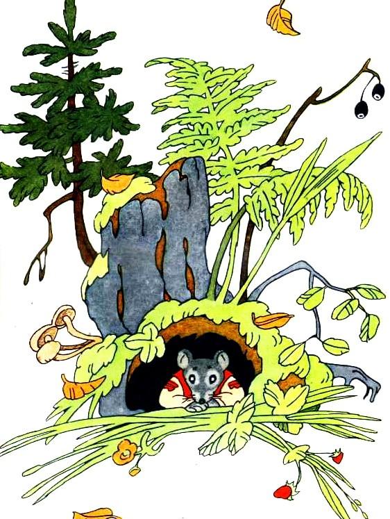 Рисунок - Курочка, мышка и тетерев читать